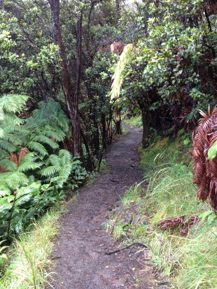 Kilauea Lki Trail