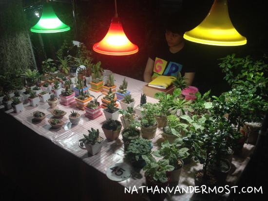 Nogn Khai Night Market