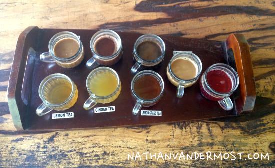 Tea and Coffee Taste Test