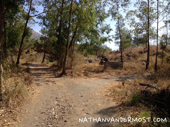 Mount Batur Y Trail