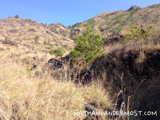 Mount Batur Rough Terrain