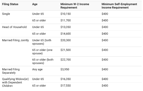 US Tax Filling Income Requirements