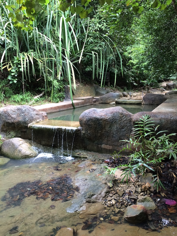Penang-National-Park-Pool